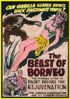 Forgotten Horrors BEAST OF BORNEO*