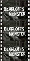 Horror DR. ORLOF'S MONSTER