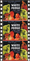 Jungle WHITE PONGO*