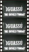 Jungle IGUASSU, THE DEVIL'S THROAT*