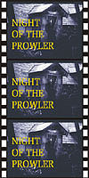 Mystery NIGHT OF THE PROWLER*