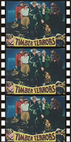 Westerns TIMBER TERRORS*